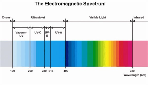 The Elecromagnetic Spectrum Shows Light In All Its Possible Wavelengths,  Measured In Nanometers (nm