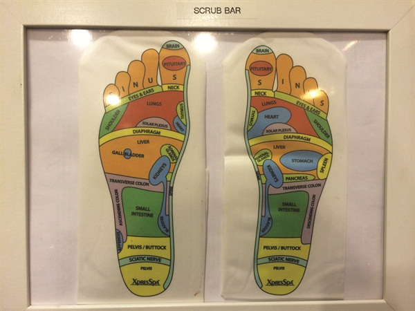 <p>The pressure points of the feet, which Williams works in her signature Footnanny treatments.</p>