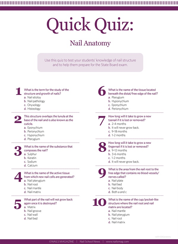 Do You Know Your Nail Anatomy? - Education - NAILS Magazine