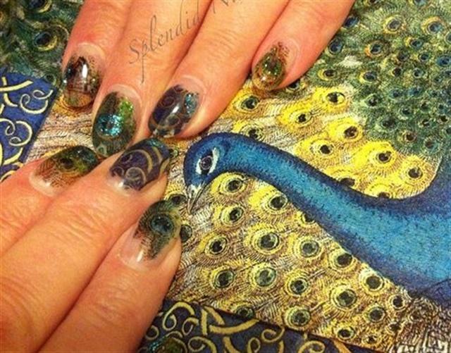 "<p>Via <a href=""http://nailartgallery.nailsmag.com/splendid2009/photo/323140/peacock"">Nail Art Gallery</a></p>"