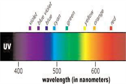 Usually Refers To The Safer, Long Wave UV A (350 400 Nm) Portion Of The  Spectrum And Should Not Include The More Dangerous Short Wave UV B Light  (250 275 ...