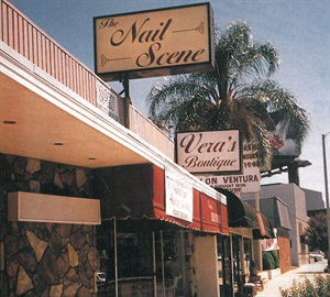 <p>Welcome to Ventura Boulevard! Near-perfect weather throughout the year makes the San Fernando Valley a shopper's paradise.</p>