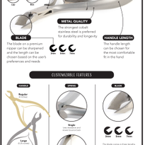Anatomy of the Cuticle Nipper