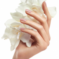 Beauty Changes Lives Foundation Announces BCL | CND | Tippi Hedren Spring  2016 Nail Scholarship...