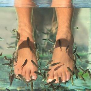 NAILS 35th Anniversary Flashback: 2008, Fish Pedicures