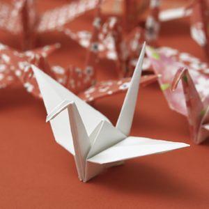 Trend Watch: Origami