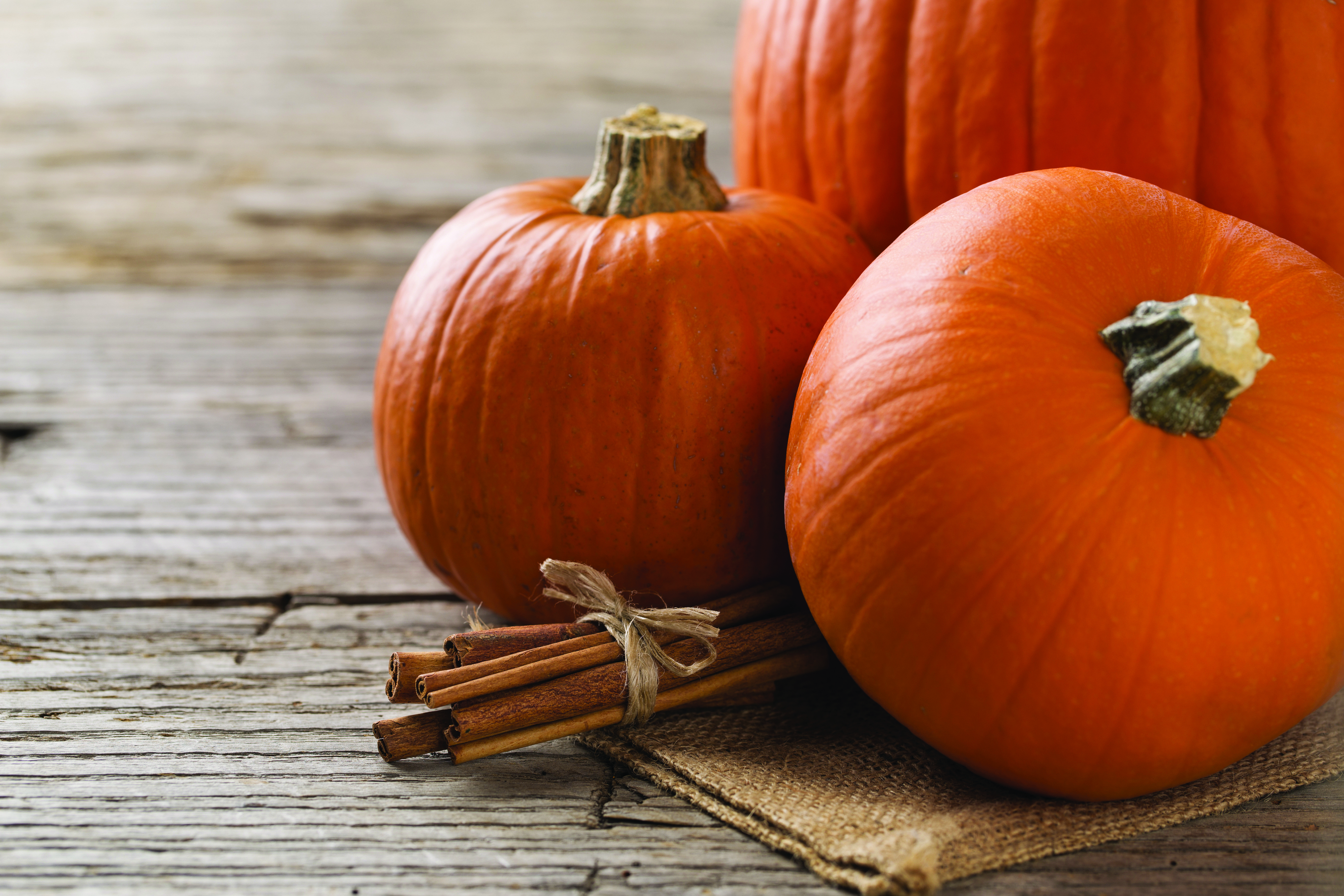 Trend Watch: Pumpkin Spice