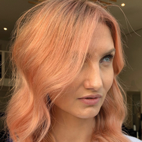 Sweet Apricot Shade using Evo Fab Pro Direct Dyes