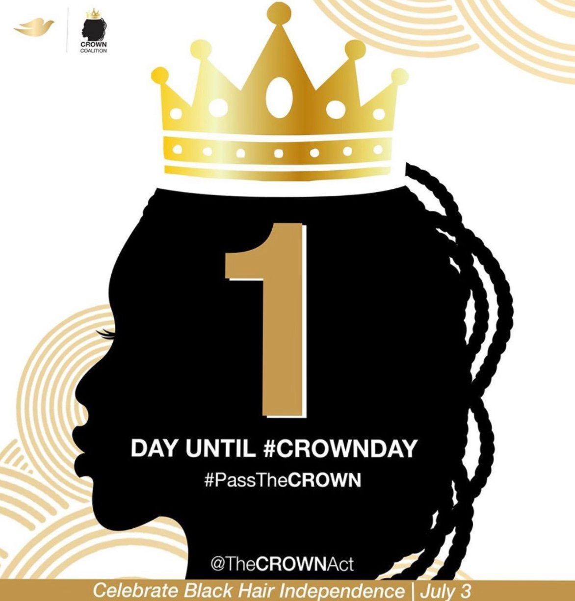 National CROWN Day: July 3 Celebrates Anniversary of Act Against Race-Based Hair Discrimination