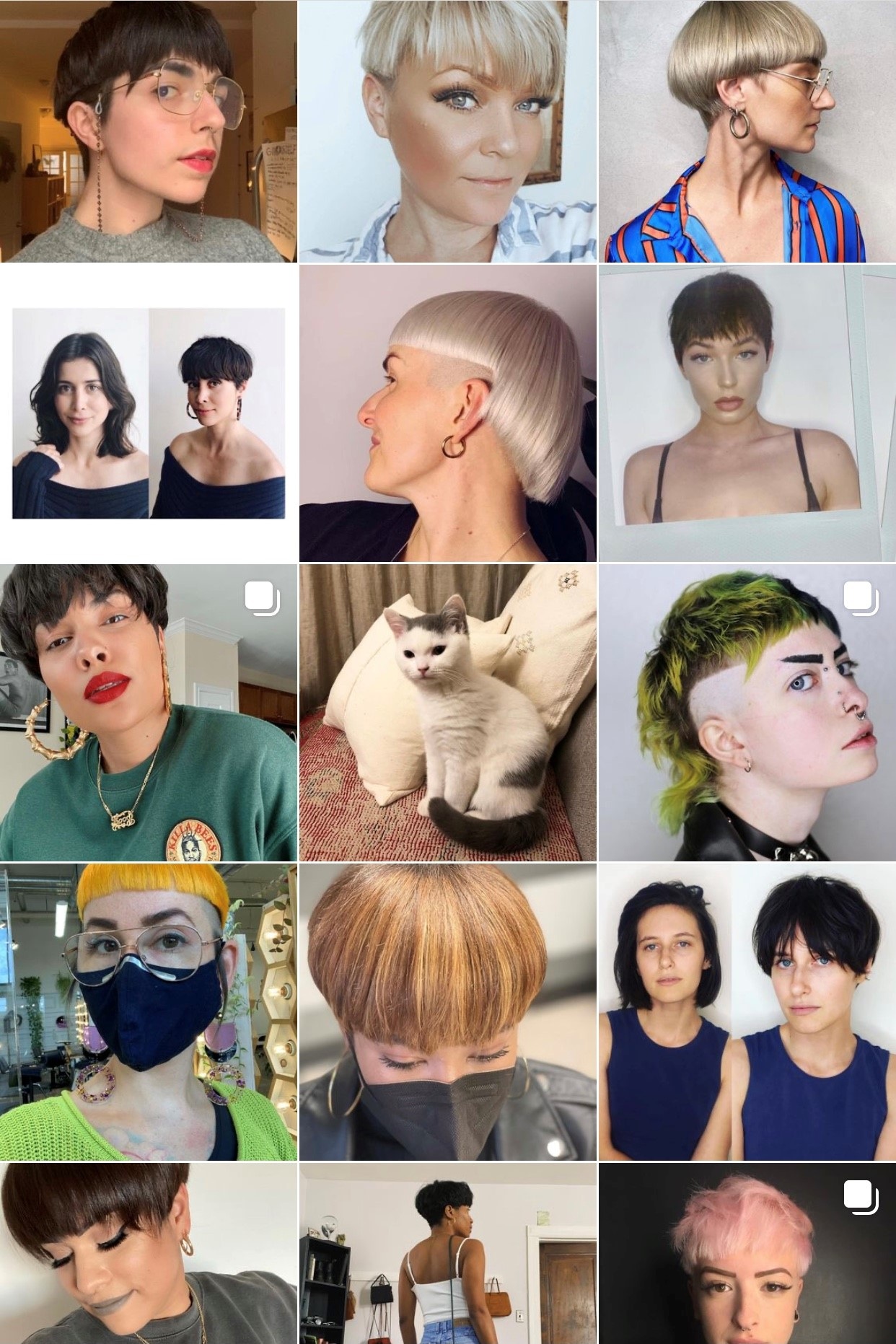 Modern Mushroom: The Bowl Cut