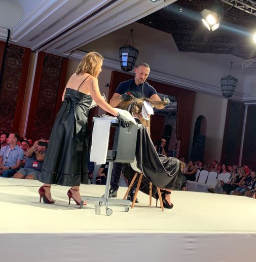 Romeu Felipe on stage at Wella Destination in Morocco