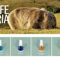 Dazzle Dry's Wildlife Victoria Collection Benefits Australian Animals Affected by Wildfires