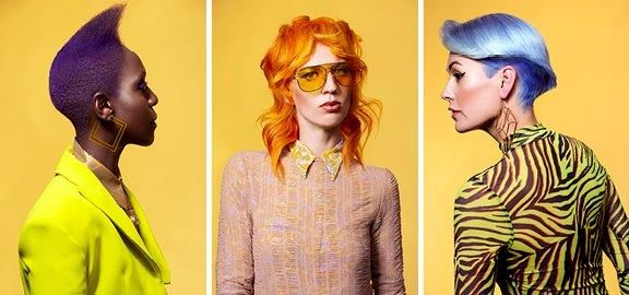 <p>The collection from the Salon Team of the Year Gold Winner of Hairstudio Infinity from the Netherlands.</p>