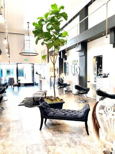 An interior shot of PlatinumBlack.  -