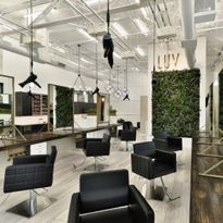 2020 Salons of the Year: LUV Salon